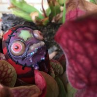 Woodrow the Bog Monster living amongst the venus flytraps, pitcher plants and sundews in a carnivorous plant bog garden. Fantasy art creature by Rachel Weaver.